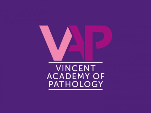 Vinzenz Pathologie