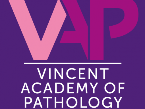 Vincent Pathology